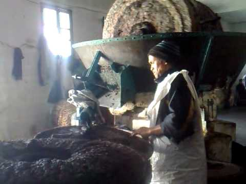 Olive oil production smashing olives in Missour Morocco