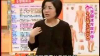getlinkyoutube.com-國民大會20091126隔空導引 凌空勁 No Contact pulling.MPG