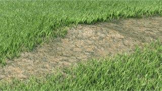 getlinkyoutube.com-Cinema 4D R15 Architectural Grass Review