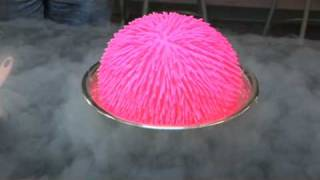 getlinkyoutube.com-Giant Koosh Ball in Liquid Nitrogen!