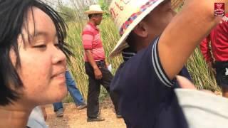 getlinkyoutube.com-แตรวง พลังหนุ่มคลองเขื่อน รับนาค วัดบางกระเบา อ.บ้านสร้าง จ.ปราจีนบุรี 10-11/03/59