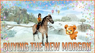 getlinkyoutube.com-Buying the new Morgan horse | Star Stable