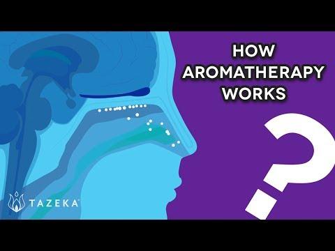 Tazeka - How Aromatherapy Works