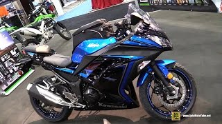 2015 Kawasaki Ninja 300 ABS Special Edition Walkaround - 2014 Toronto Snowmobile & ATV Show