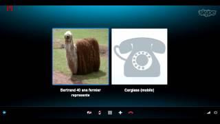 getlinkyoutube.com-[EPIC CANULAR] Skype Carglass #1