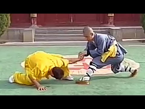 Shaolin Thirty-Two Methods of Qin Na