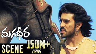 Ram Charan & Dev Gill Ultimate Horse Race Fight || Magadheera Telugu Movie || Kajal Aggarwal