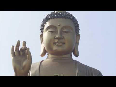 Mindful meditation class 6, loving kindness