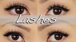 getlinkyoutube.com-My Favorite False Lashes