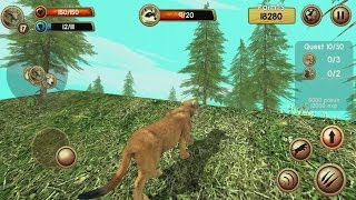 Wild Cougar Sim 3D Android Gameplay #3