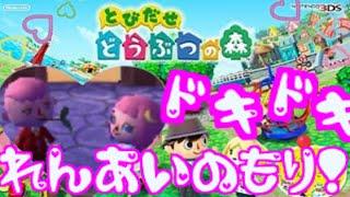 getlinkyoutube.com-【とび森】ドキドキ!恋愛の森!【どう森】