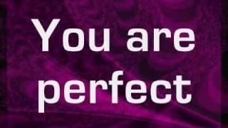 Pink - Perfect (clean version) - lyrics on screen