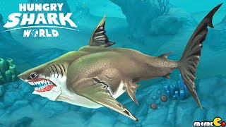 getlinkyoutube.com-GREAT WHITE SHARK Unlocked Next Up Megalodon Shark - Hungry Shark World
