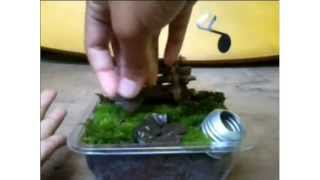 getlinkyoutube.com-( Diy )cara membuat  taman kecil (miniatur taman)