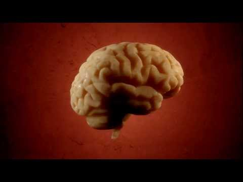 The Human Brain Rotating Animation (HD)
