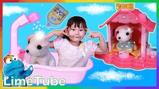 쪼꼬미 목욕 시키기! 라임이의 장난꾸러기 아기 강아지 애완동물 키우기 LimeTube & Toy 라임튜브
