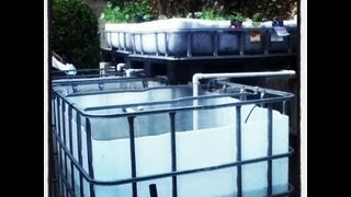 Aquaponics BackYard System - How to build Part2