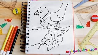 getlinkyoutube.com-How to draw a Bird - Easy step-by-step drawing lessons for kids