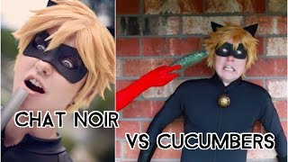 getlinkyoutube.com-Chat Noir vs Cucumbers