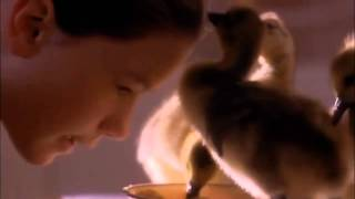 10000 miles - Mary Chapin Carpenter (Fly away home)