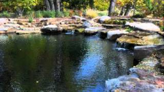 getlinkyoutube.com-Natural Swimming Pools & Ponds: About