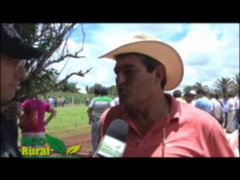 Eco Rural Forraje verde Hidropónico, una alternativa para productores de leche.f4v