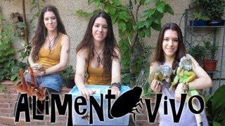 getlinkyoutube.com-CUIDADOS Y CRIA DE ALIMENTO VIVO (Grillos y otros) - Tutorial con daden Reptilera