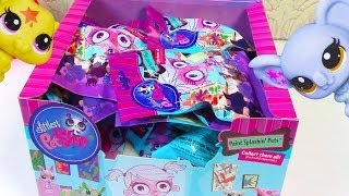 getlinkyoutube.com-LPS Blind Bag HAUL Littlest Pet Shop Paint Splashin BOX case Part 2 toy review opening