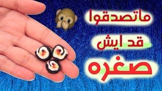 getlinkyoutube.com-اغرب لعبة كورية سوت اصغر سوشي في العالم! | دراما كوين