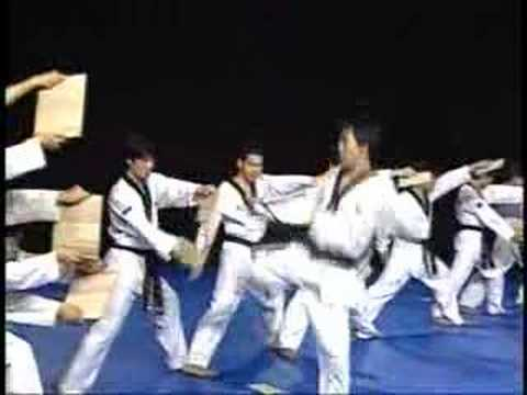 Korean  National Taekwondo Demo Team