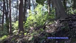 getlinkyoutube.com-[4K] Panasonic HC-WX970M vs Sony FDR-AX100 Shoot out