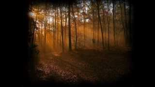 getlinkyoutube.com-DANS LES BOIS (Instrumental) -Michel Rivard (2010)  Opéra-folk Les Filles de Caleb