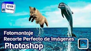getlinkyoutube.com-Como hacer un Recorte Perfecto de Imagenes / Photoshop cs5 / tutorial fotomontaje
