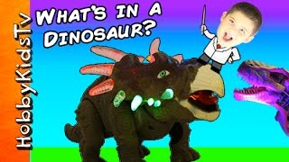 getlinkyoutube.com-What's in a Robot Dinosaur? Animatronic T-Rex Toy Mechanical + Science Lab by HobbyKidsTV