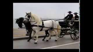 Ένα Όμορφο Αμάξι με Δυο Άλογα