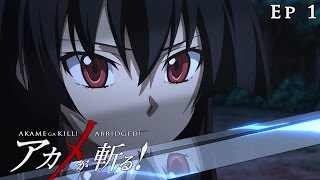 getlinkyoutube.com-Akame ga Kill! Abridged! - Episode 1