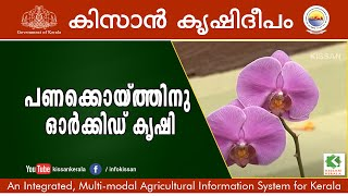 getlinkyoutube.com-Success story on Commercial Orchid Cultivation by Sri. Ajith, Trivandrum-598