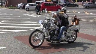 【大黒PA】ハーレーダビッドソン御一行様【Harley Davidson】