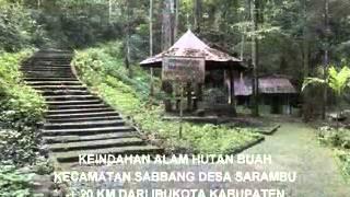 anak masamba nyanyi Lembata Tana Luwu