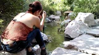 getlinkyoutube.com-Japanese pond
