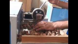 getlinkyoutube.com-Betel Nut Cutting Machine