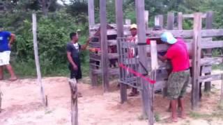 getlinkyoutube.com-Corrida de Cavalos-Petecas3-Piripiri-PI