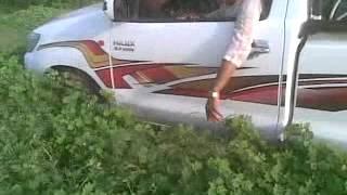 getlinkyoutube.com-خريف السودان في كسﻻ