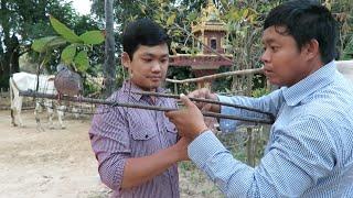getlinkyoutube.com-Dove Trap at Takeo Province in Cambodia