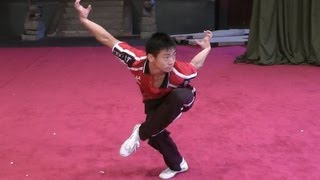 getlinkyoutube.com-Wushu Eagle Style Form - Instructional