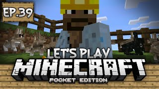 getlinkyoutube.com-Survival Let's Play Ep. 39 - 0.13.0 Rabbits and Redstone!!! - Minecraft PE (Pocket Edition)