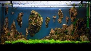 getlinkyoutube.com-Allestimento acquario fantasy - Aquarium Setup - Aquascape: Esercitazioni Jedi STEP 3