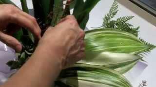 getlinkyoutube.com-10 Minute Flower Arrangement No.1