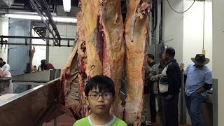 getlinkyoutube.com-Eid-Adha Qurbani/Udhiya in United States of America - Connecticut USA [English Version By Aiman P1]