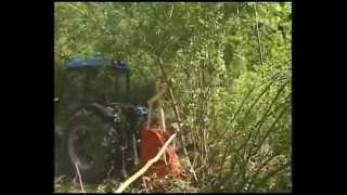 SEPPI M. - MIDIFORST - Forestry mulcher/ Forstmulcher/ trincia forestale